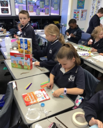 Year 2 Science and Technology